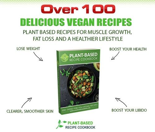Plant-Based Recipe Cookbook 2.0 PDF